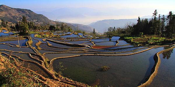 Rizières en terrasses à Yuanyang, dans la province du Yunnan