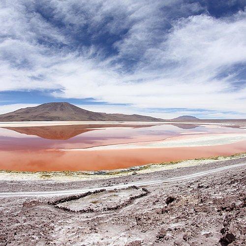Hauts plateaux des Andes - La Paz -