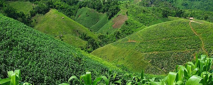 Entre montagnes et forêt tropicale