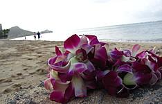 Voyage de noces à Oahu, Waikiki et Big Island