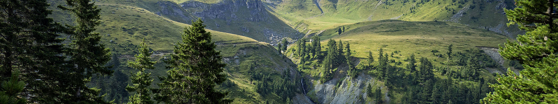 Kosovo reizen