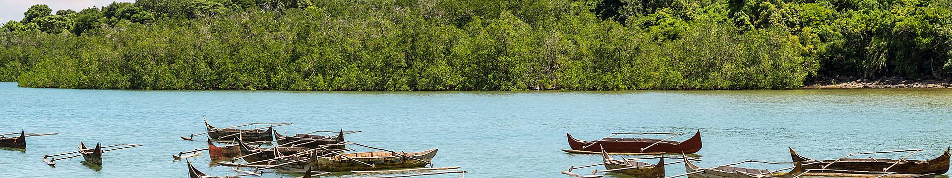 Voyage en Guyane