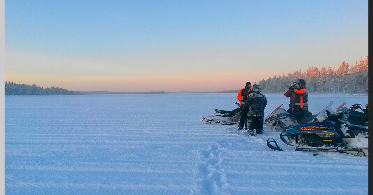 Voyage à la neige : Expédition lapone: safari motoneige et chiens de traîneau
