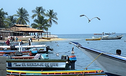 patou, voyage au Venezuela