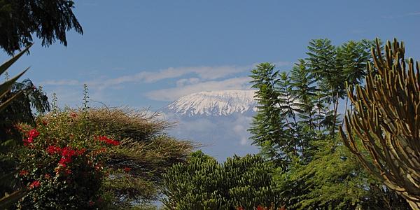 El Kilimanjaro