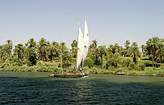 Tour des Oasis de Siwa à Baharia et Désert Blanc et Noir