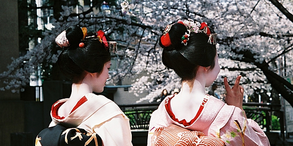 Geishas en tenue traditionnelle, Japon