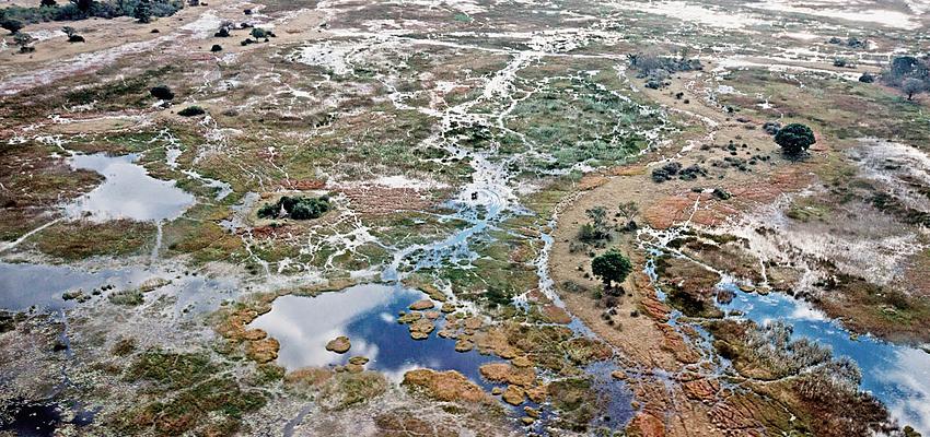 Vue aérienne du delta de l'Okavango