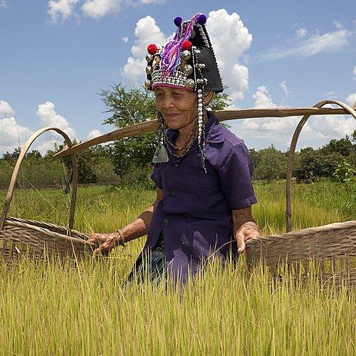 Secrets et rencontres en Haute Région - Baie de Hạ Long -