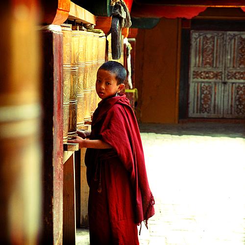 Découverte du Yunnan en « semi-liberté » -