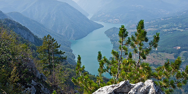 Monts Tara, Serbie