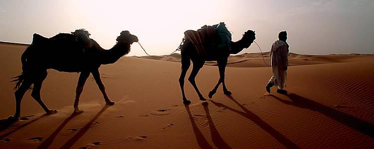 Wanderreise - auf den Spuren der Beduinen