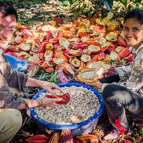 La Route Du Cacao Au Pérou - Juanjuí - sur-mesure - circuit - evaneos