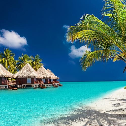 De Ceylan aux Maldives -