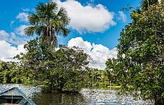 Extension en Forêt Amazonienne