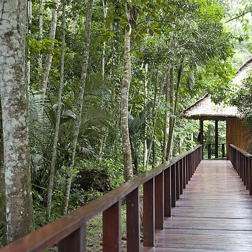 Monde inca et forêt amazonienne - Lima -