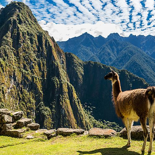 Du Nord au Sud Pérou - Lima -