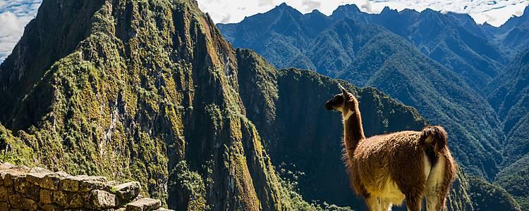 Tra Cusco e Machu Picchu