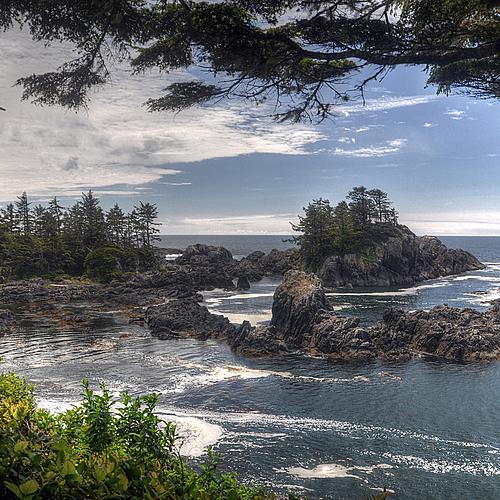 Exploration de l'Île de Vancouver - Vancouver -