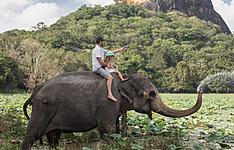 Au pays des éléphants avec les tout petits