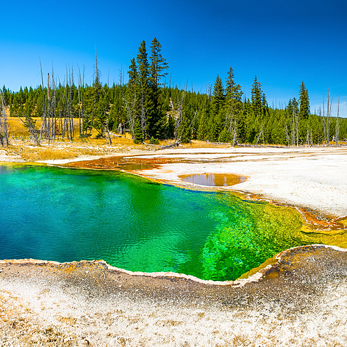 Montana et Wyoming : les grands parcs Américains - Salt Lake City -