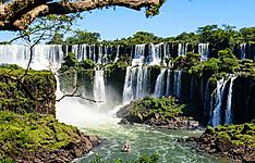 Forêt Subtropicale et montagnes andines