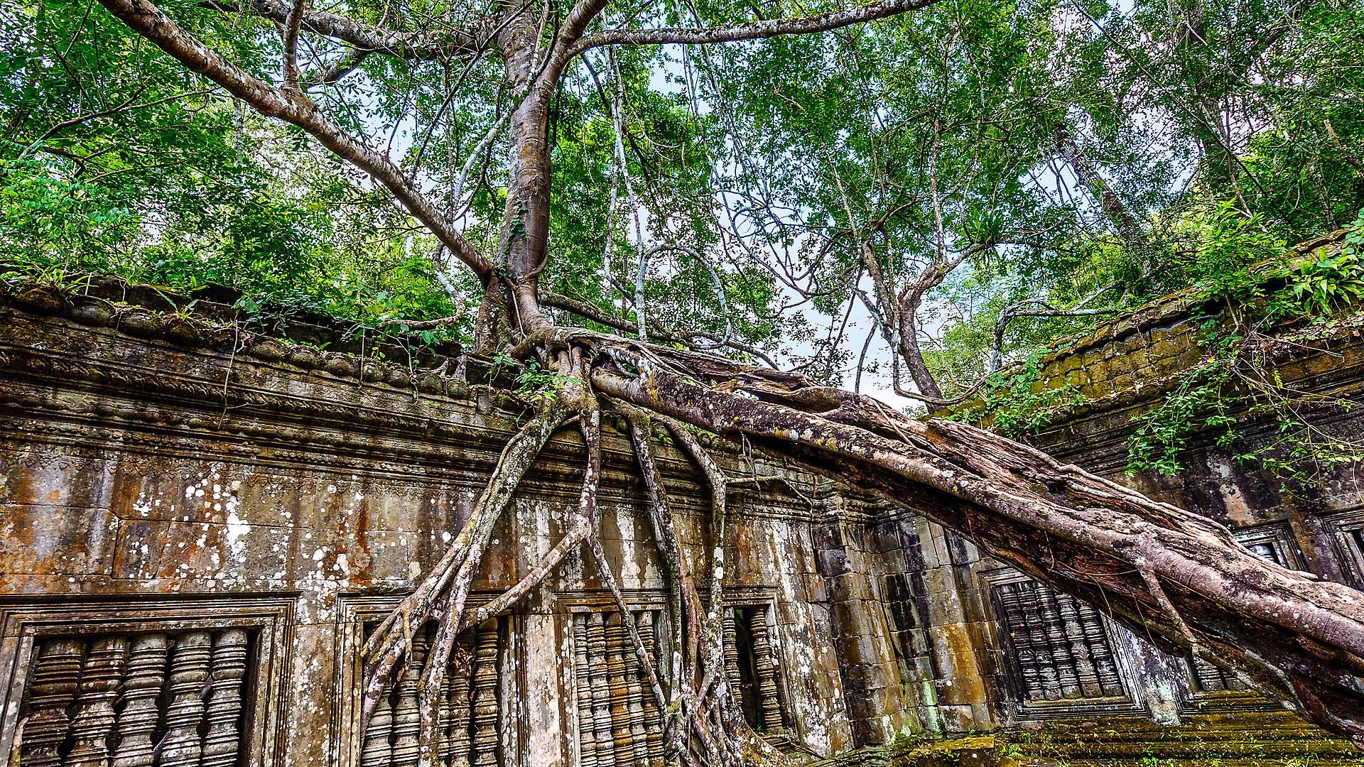 Von Phnom Penh zu Kambodschas Weltkulturerbe