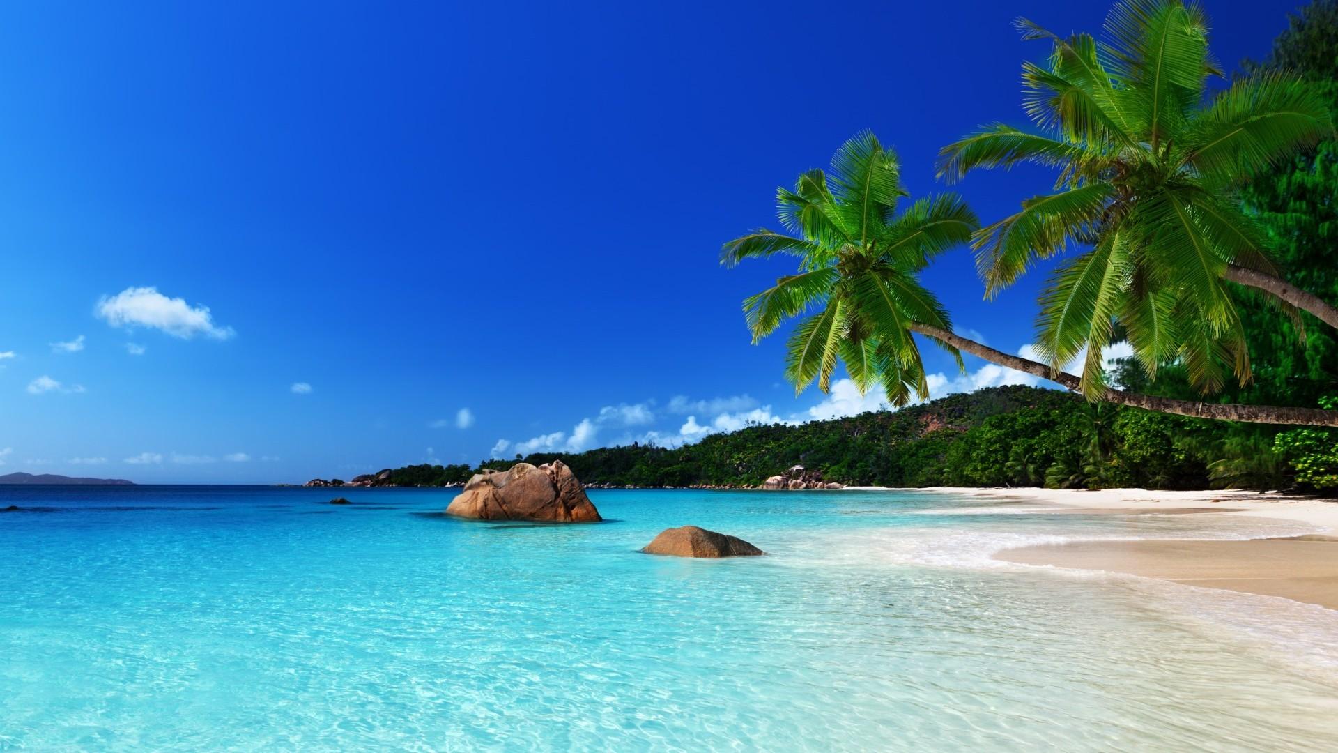 Seychelles-Maurice, combiné detox