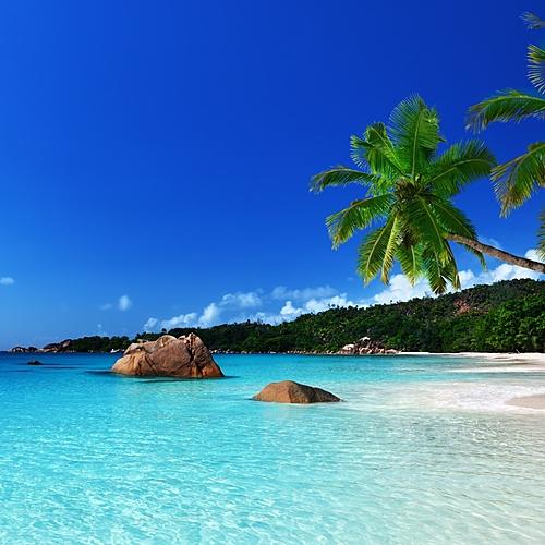 Seychelles-Maurice, combiné detox - Mahé -