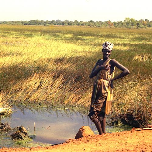 Casamance, rizières et palmeraie - Mbour -