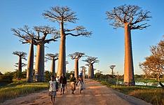 Combiné Occidental et Oriental malgache