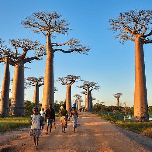 Combiné Occidental et Oriental malgache - Antananarivo -