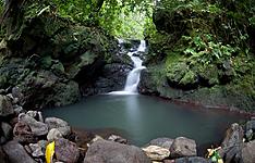 Retour aux sources: îles de Raiatea et Raivavae