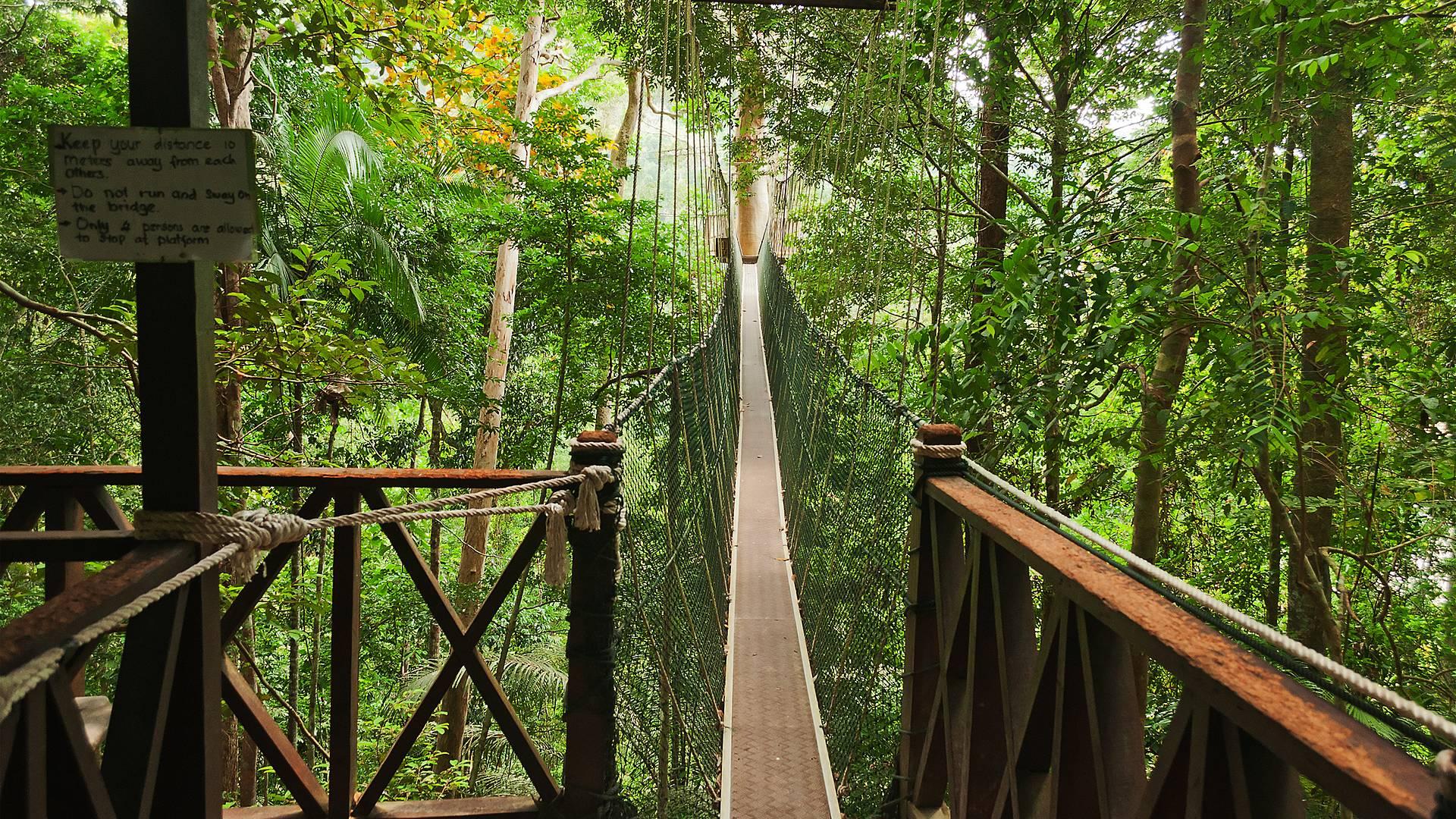 Malacca, Kuala Lumpur et parc de Taman Negara