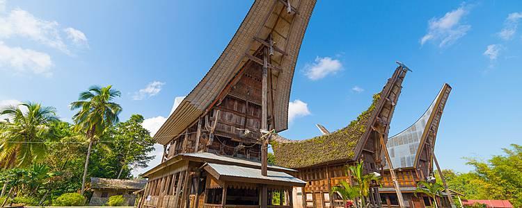 Combinado Bali - Toraja