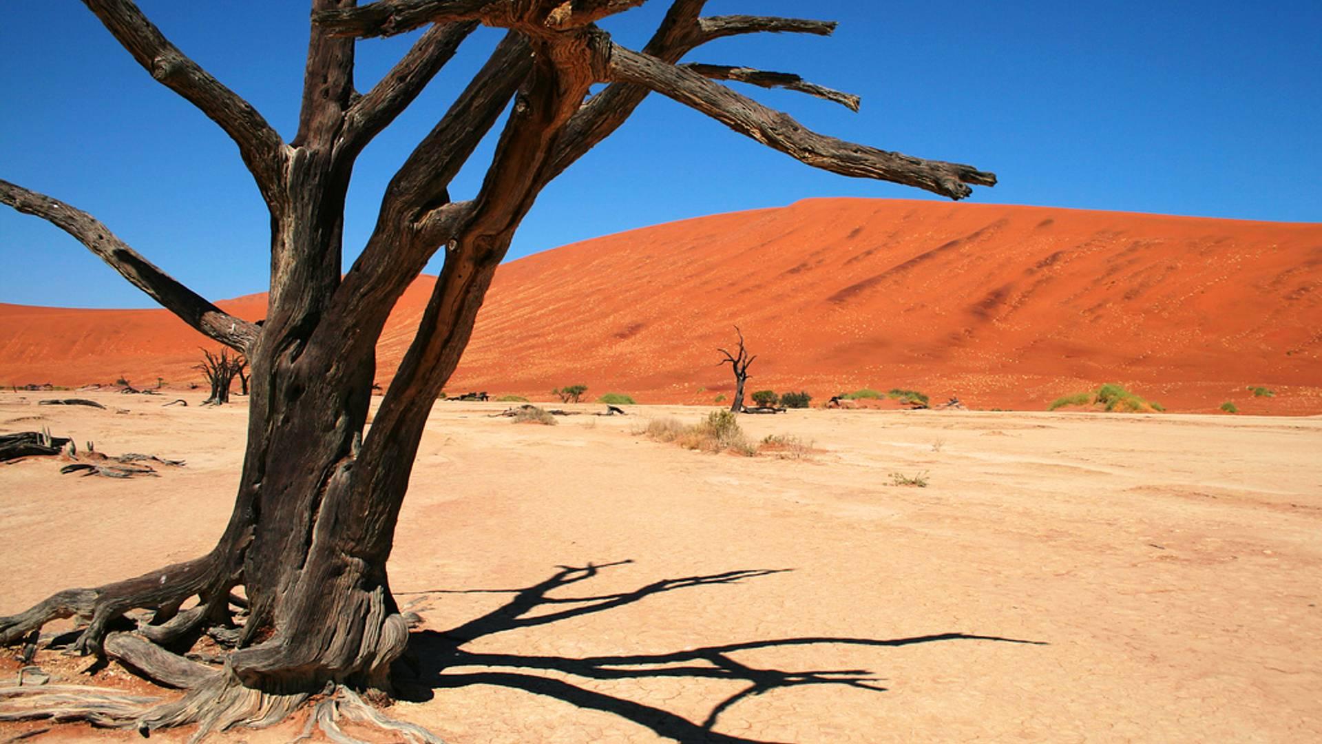 La Namibie du Nord au Sud, lodges et bivouac