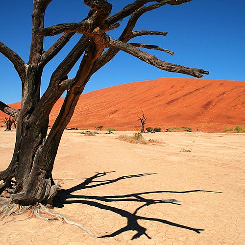 La Namibie du Nord au Sud, lodges et bivouac - Windhoek -