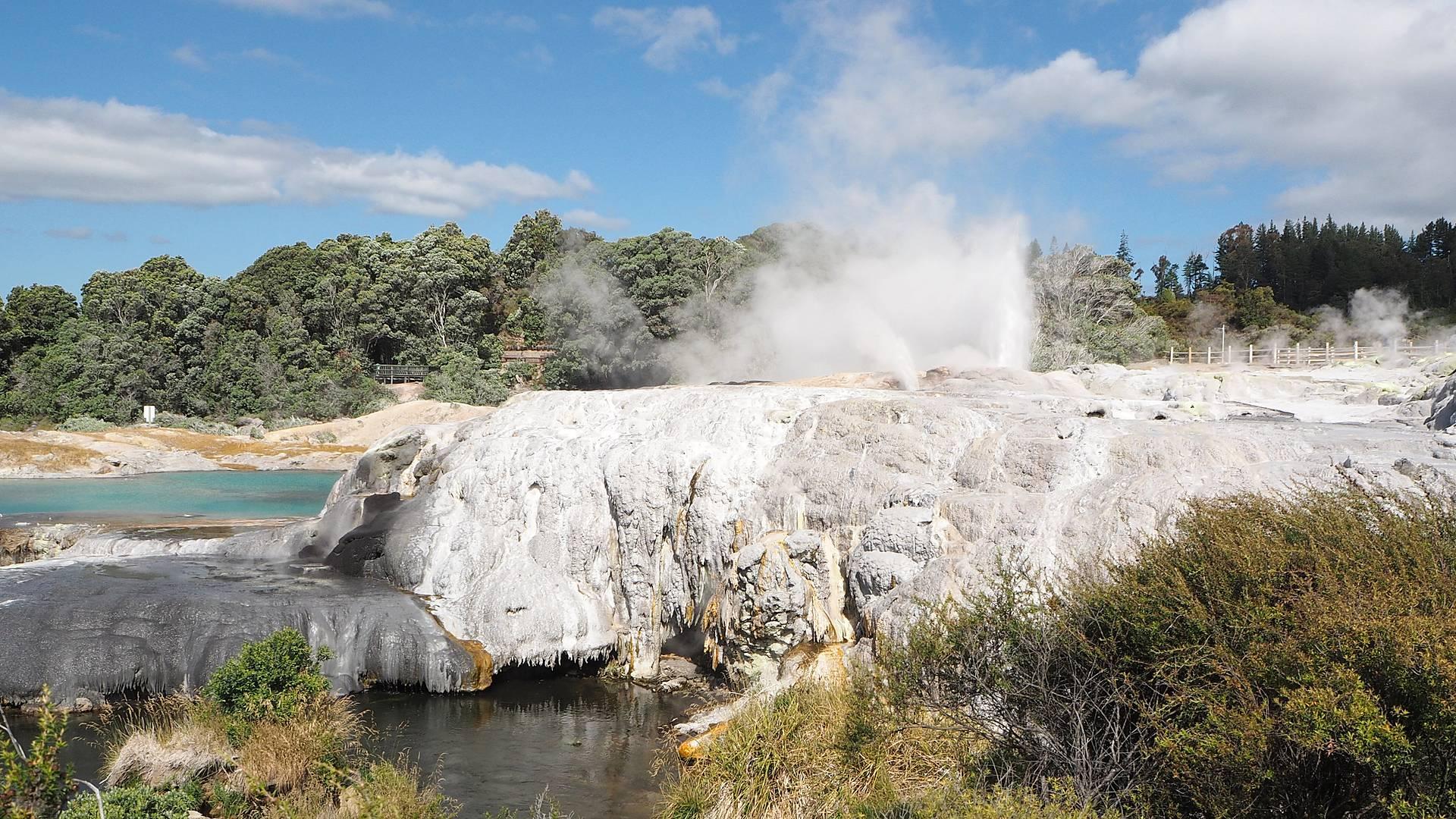 De Auckland à Wellington, geysers et volcans