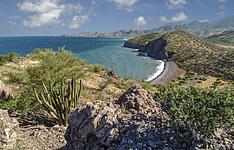 Les Galapagos mexicains - la Basse-Californie