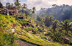 Java Bali et îles Gili