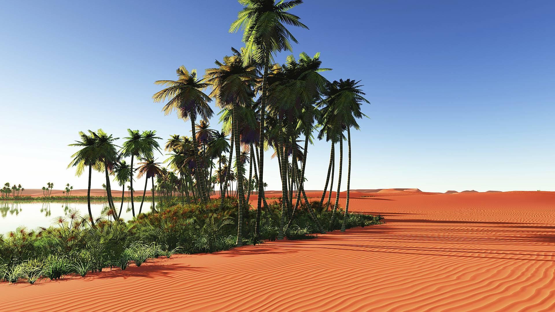 Marrakesch und das Paradies am Rand der Wüste