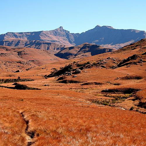 Safaris en terre Tsonga - Johannesbourg -
