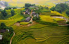 Entre montagnes, rizières en terrasses et delta