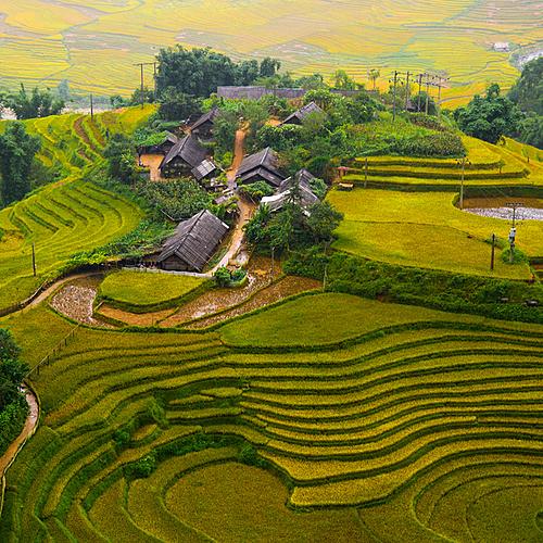 Entre montagnes, rizières et delta -