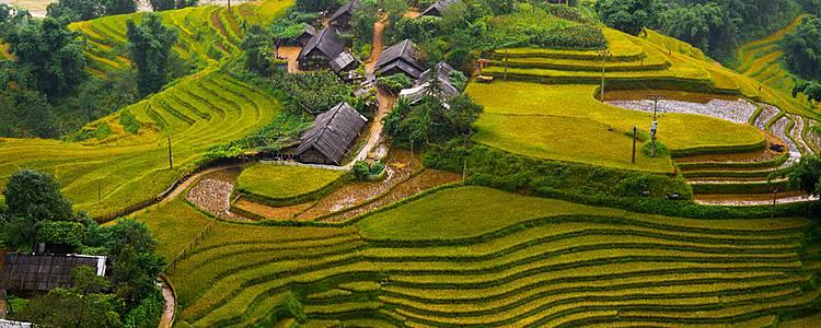 Entre montagnes, rizières et delta