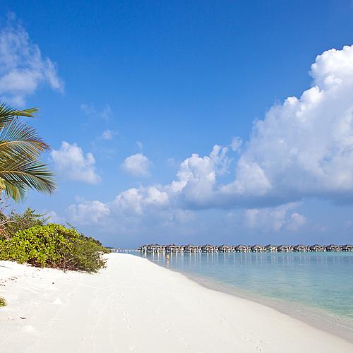 Les plus longues plages de sable blanc de l'archipel au Sun Island Resort -