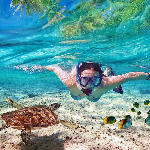 Croisière snorkeling d'îles en îles - Malé -