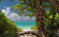 Shangri-La\'s Villingili Resort and Spa, étangs naturels, végétation luxuriante et lagon turquoise
