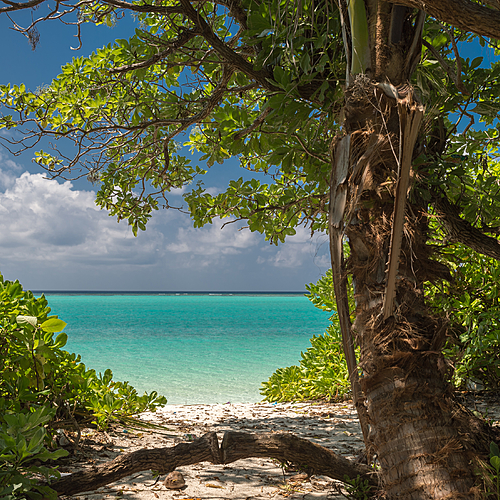 Shangri-La's Villingili Resort and Spa, étangs naturels, végétation luxuriante et lagon turquoise - Addu Atholhu - sur-mesure - circuit - evaneos