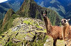 Pérou gourmand en groupe